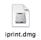 The iPrint DMG