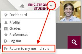 Profile Menu - Return To Normal Role