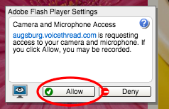 "Click ""Allow"" to let VoiceThread use your microphone and/or webcam."