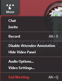 More menu options include Chat, Invite, Record (Alt + R), Disable Attendee Annotation, Hide Video Panel, Audio Options..., Video Settings..., End Meeting (Alt + Q)